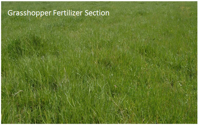 Grasshopper Fertilizer Section