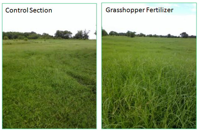 control section grasshopper fertilizer